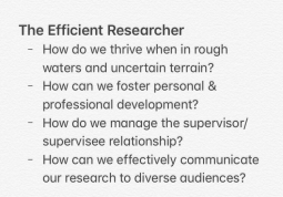 The Effiicient Researcher