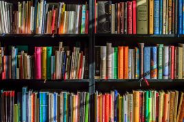 Selection of books in bookcase