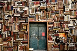 Bookcase and Door Image- Link to Institutional Academic Leads Page