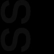 Standing Seminar in Critical Theory Logo